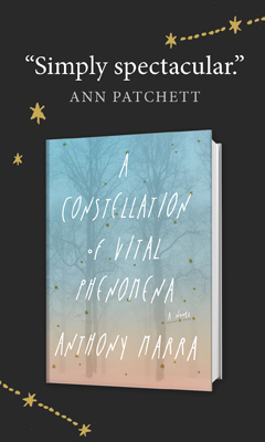 Hogarth: A Constellation of Vital Phenomena by Anthony Marra