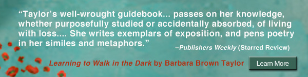 HarperOne: Learning to Walk in the Dark by Barbara Brown Taylor