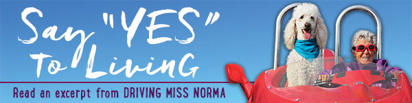 HarperOne: Driving Miss Norma by Tim Bauerschmidt and Ramie Liddle