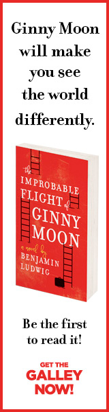 Mira: The Improbably Flight of Ginny Moon by Benjamin Ludwig