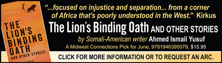 Catalyst Press: The Lion's Binding Oath and Other Stories by Ahmed Ismail Yusuf