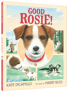 Candlewick Press: Good Rosie! by Kate DiCamillo, illustrated by Harry Bliss