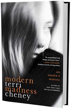 Hachette Go: Modern Madness: An Owner's Manual by Terri Cheney