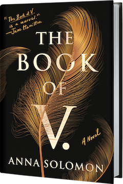 Henry Holt & Company: The Book of V. By Anna Soloman