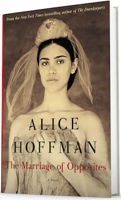 Simon & Schuster: The Marriage of Opposites by Alice Hoffman