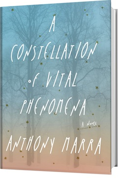 Hogarth: A Constellation of Vital Phenomena by Anthony Marra