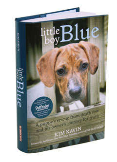 Barron's: Little Boy Blue by Kim Kavin